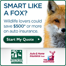 Start your insurance quote today!
