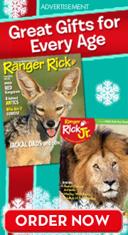 Ranger Rick magazines make great gifts!