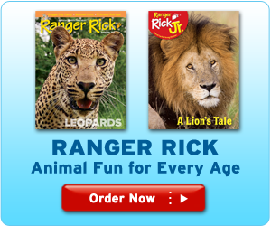 Ranger Rick is now available for all ages!