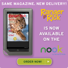 Our award-winning children's magazines are now available on the Nook!