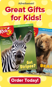ranger rick jr magazine makes a great gift for kids