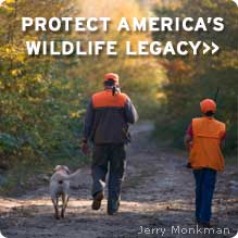 Help protect America's wildlife legacy