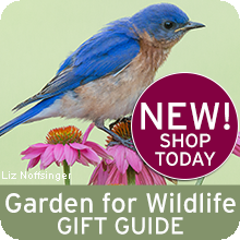 Shop our Garden for Wildlife Gift Guide!
