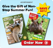 Gift the gift of summer fun - subscribe today!