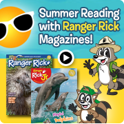 Enjoy Summer Reading with Ranger Rick Magazines