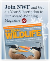 Join NWF