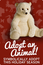 Symbolically adopt an animal